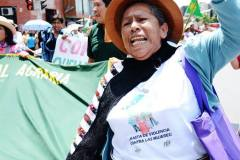 124Viviana-Rojas_Via-Campesina_Peru2014