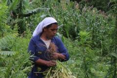 """Archivo Marcha Mundial de las Mujeres, Vale do Ribeira, Brasil, 2019. """"Mutirão"""" (agrupación para trabajar conjuntamente) de la Red Agroecológica de Mujeres Agricultoras (Rede Agroecológica de Mulheres Agricultoras - RAMA)."""