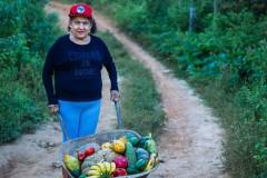 Archivo La Vía Campesina. Brasil, Movimiento de los Trabajadores Rurales Sin Tierra (Movimento de Trabalhadores Rurais sem Terra - MST).