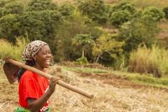 Amelia Collins / Amis de la Terre International, Namaacha, sud du Mozambique. Femme paysanne marchant vers son champ. Les paysans ici se sont organisés dans une association et ont commencé la préparation à l'agroécologie.