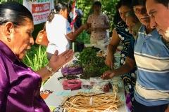 El-Salvador-Feria_de_Semillas-CESTA-2018-3